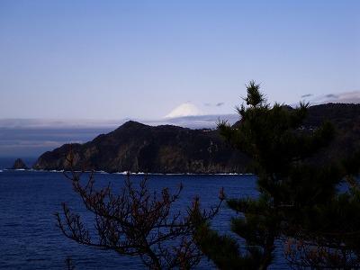 黄金崎からの富士