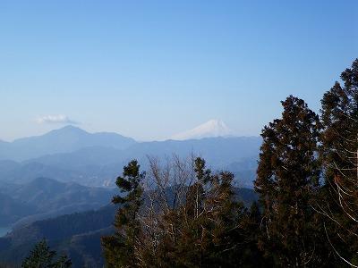 景信山からの富士