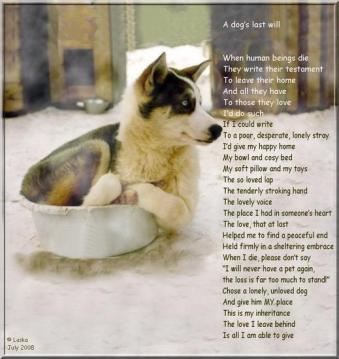 dogs-last-will.jpg