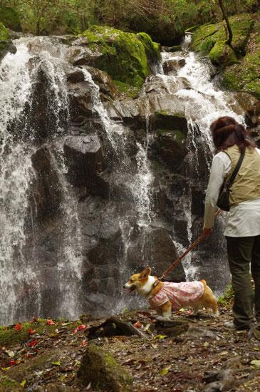 鶏鳴の滝2