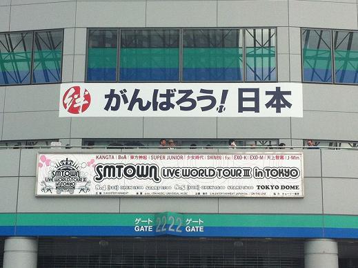 SMT3.jpg