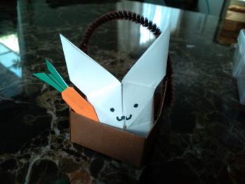 ウサギ育成セット