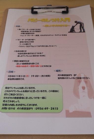 DCF00481.jpg