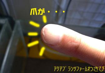 20120520-7