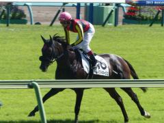 返し馬:レイヌドネージュ
