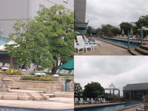 pool16