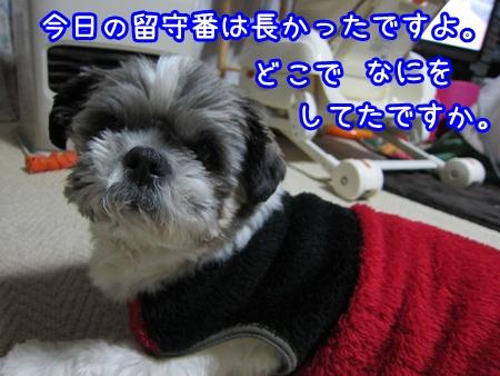 0106-01_20130106211549.jpg