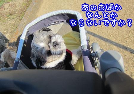 0107-02_20130107164019.jpg