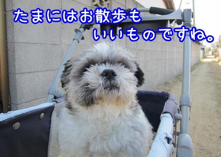 0131-02_20130131150057.jpg