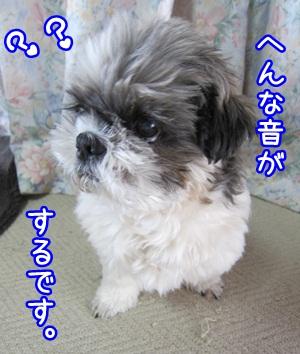 0201-01_20130201145553.jpg