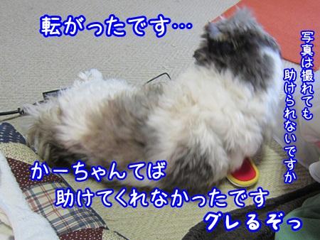 0224-07_20130224213137.jpg
