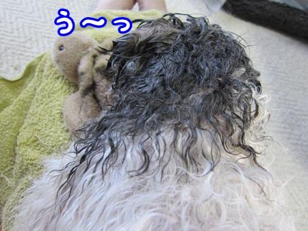 0306-04_20130306205441.jpg