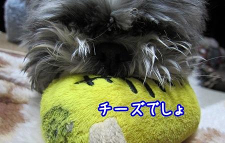 0310-05_20130310214511.jpg
