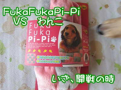 0731-fuka.jpg