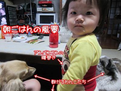1023-04_20121024071203.jpg