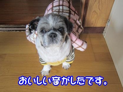 1201-03_20121201213646.jpg