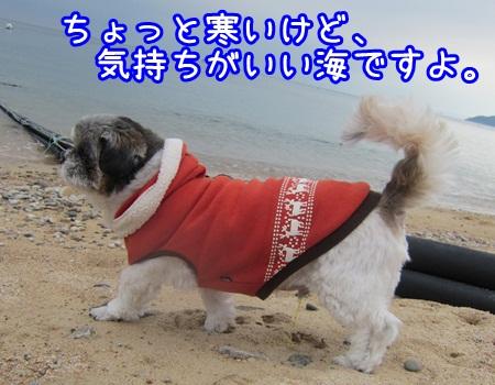 1225-01_20121225211229.jpg