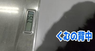 1225-05.jpg