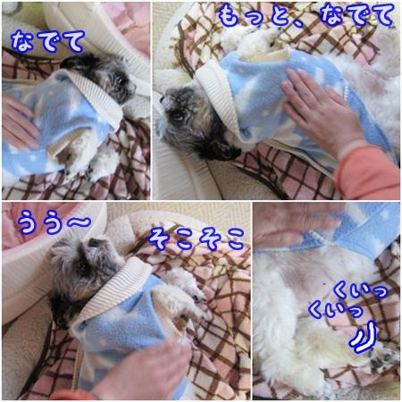 1227-01_20121227171759.jpg