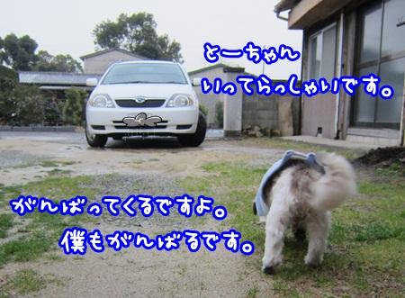 1228-03_20121228142140.jpg