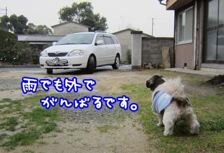 1228-04_20121228142141.jpg