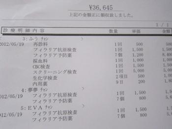 0519-領収書