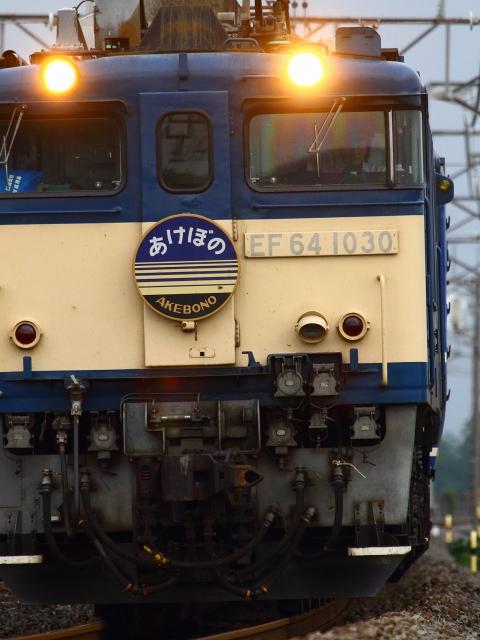 _MG_4691.jpg