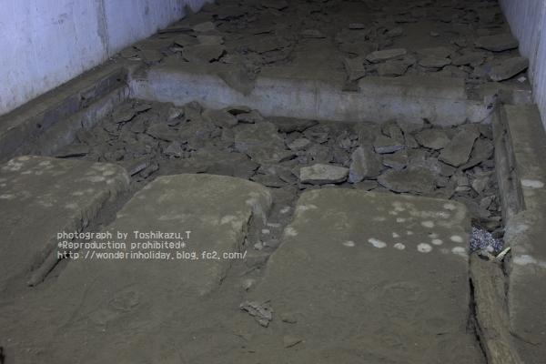 IMG_8316s.jpg