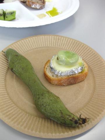 シェーブルチーズ4252