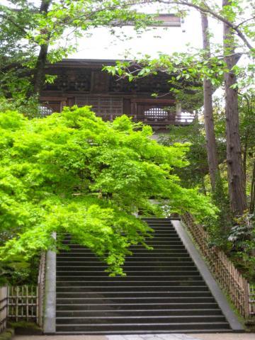 円覚寺4262
