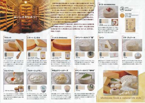 ミンタル・チーズ1
