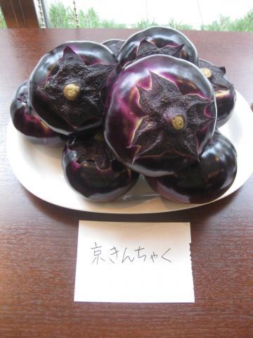 京きんちゃく919