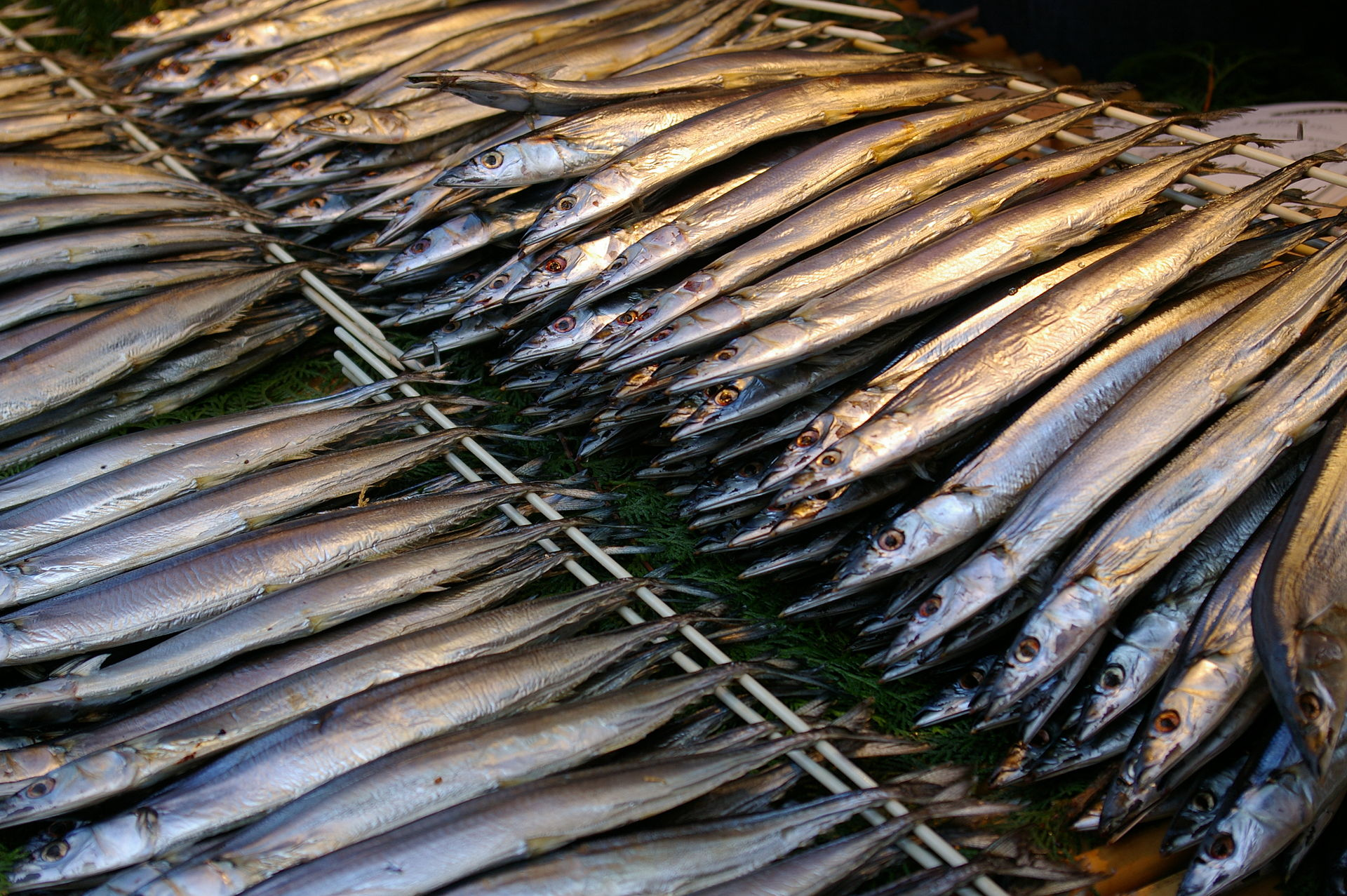 Pacific_saury_dried_overnight.jpg