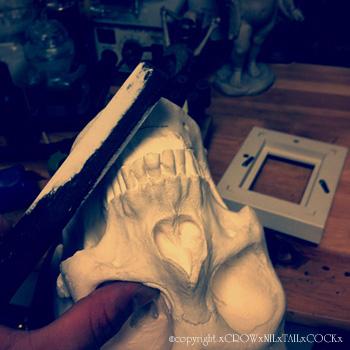 石膏 頭蓋骨 加工