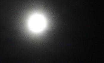130919中秋の名月