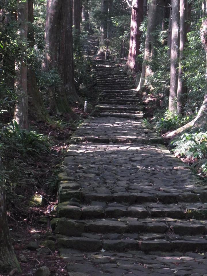 大門坂(熊野古道)-R0014926