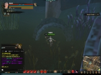 DragonsProphet_20141005_165907.jpg