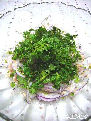 201107 スミレの料理 赤タマネギのサラダ