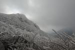 2014-01-11大船山頂を見上げる