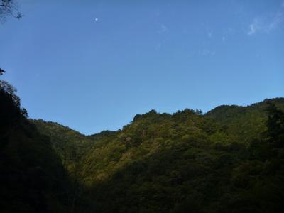 2012-10-07-013.jpg