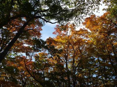 2012-10-21-056.jpg