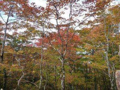 2012-10-21-077.jpg