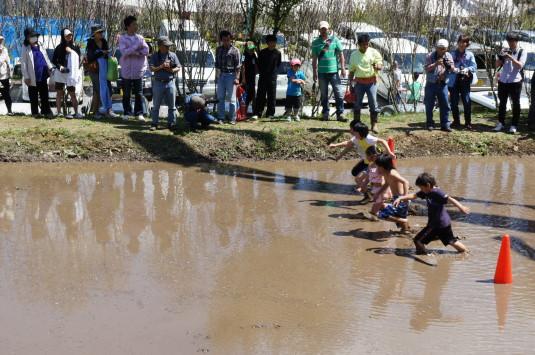 長沢鯉のぼり祭り2 どろんこレース スタート