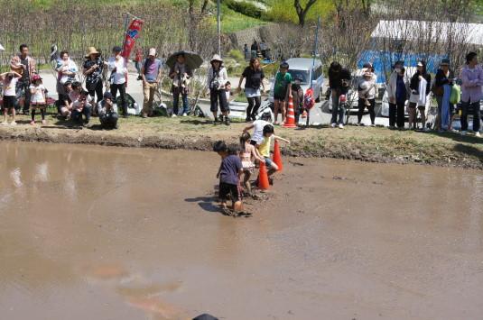 長沢鯉のぼり祭り2 どろんこレース コーンを回る