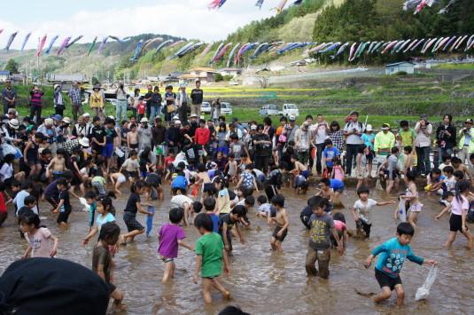長沢鯉のぼり祭り2 つかみどり