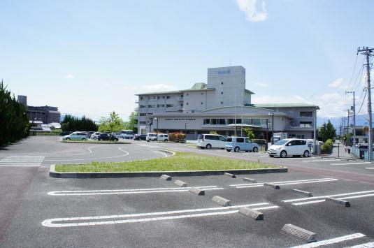 カルガモ親子 駐車場