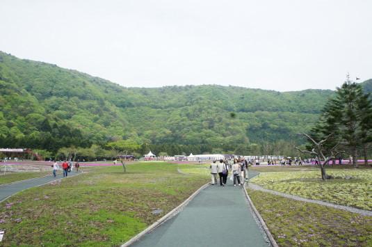 富士芝桜まつり 入口