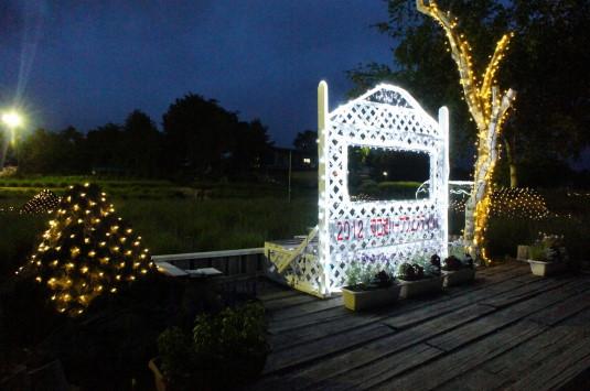ハーブフェスティバル ライトアップ イルミ