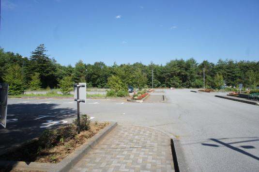 花の都公園 百日草 駐車場