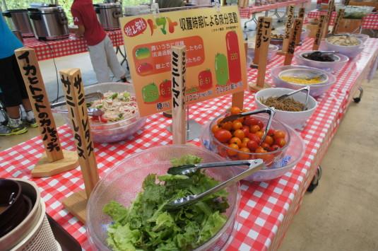 アルムおんじの台所 料理 サラダ